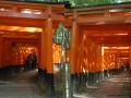 Fushi-mi-Inari Taisha, torii rossi