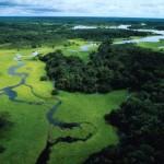 Pogrom in Amazzonia