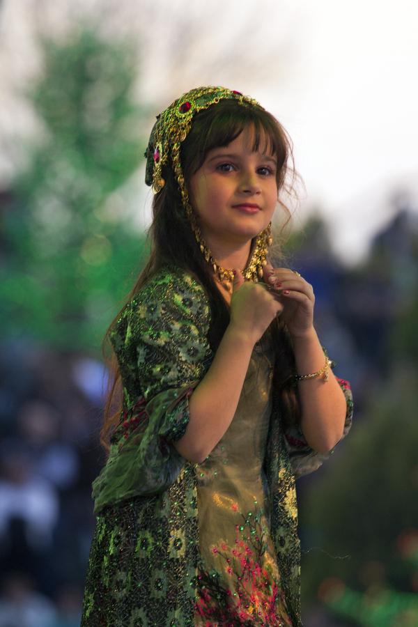 I curdi da ocalan ai peshmerga etnie for Parlamentari donne