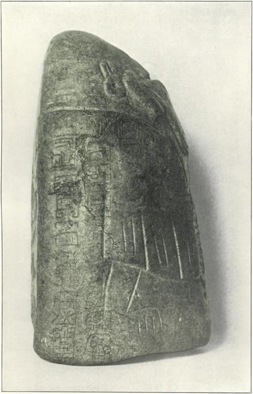 statuetta-Tuxla