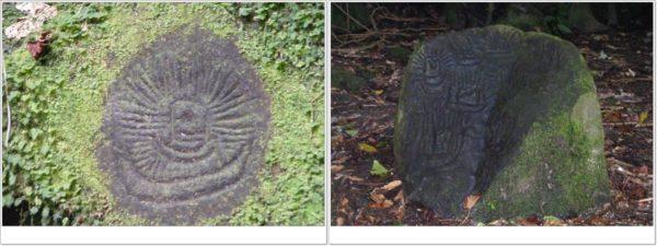 Flora Devatine - petroglifo-e-incisa-di-vaiote