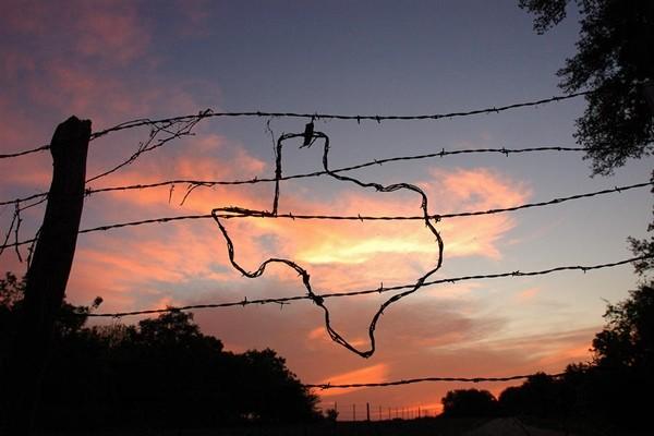 elezioni usa stato per stato - texas