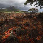 Mauritius, al via i festeggiamenti per il 50esimo anniversario dell'indipendenza