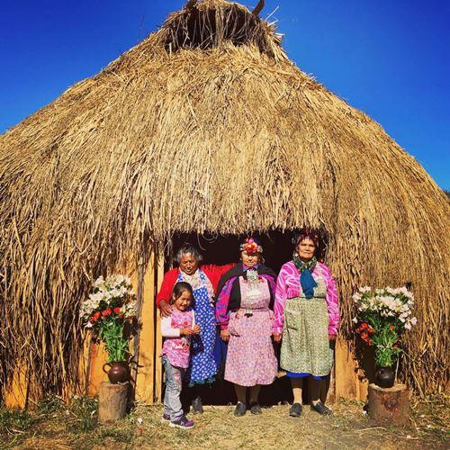 mapuche popolo della terra
