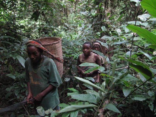 baka nomadi foresta